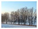Zimowa impresja